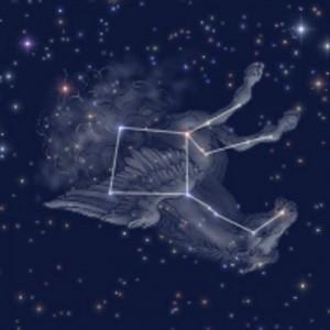 秋の夜空にペガスス 怪物退治で有名です 癌細胞も退治して‥